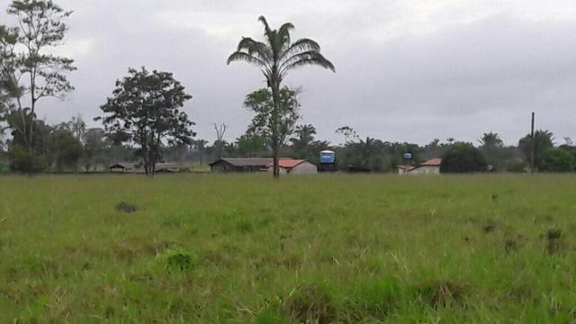 Fazenda no Pará