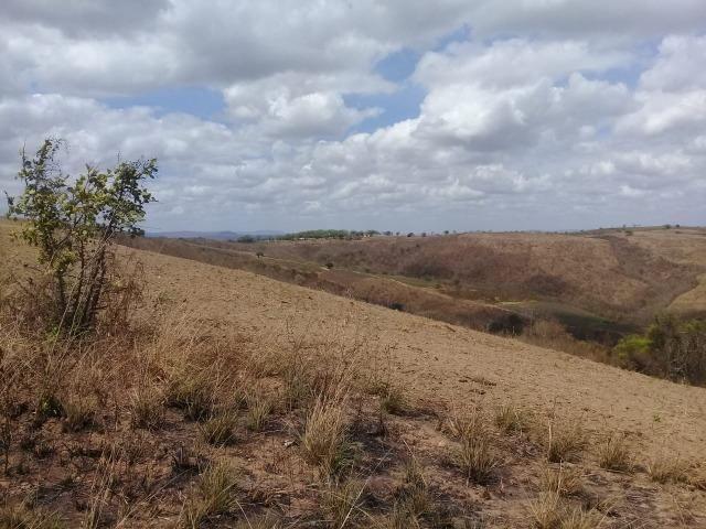 Pombos-Vend. 480 mil reais-Tem 120 Hect. Fazenda Completa,Água,Pastos, e mais - Foto 10