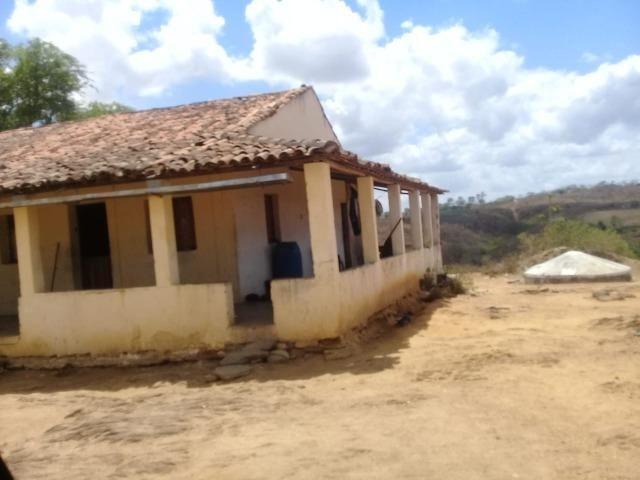 Pombos-Vend. 480 mil reais-Tem 120 Hect. Fazenda Completa,Água,Pastos, e mais - Foto 3
