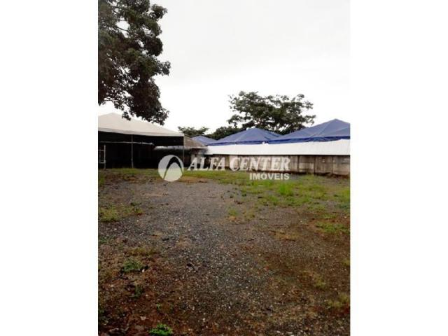 Área para alugar, 1000 m² por r$ 2.000/mês - setor castelo branco - goiânia/go - Foto 5