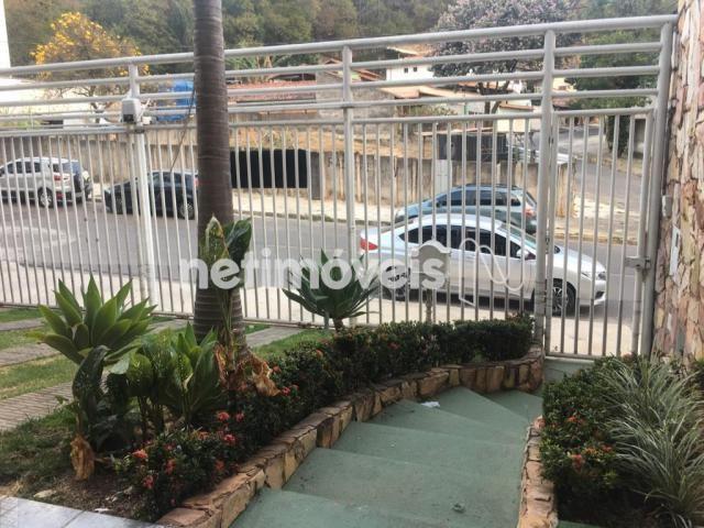 Casa à venda com 5 dormitórios em Álvaro camargos, Belo horizonte cod:765414 - Foto 3