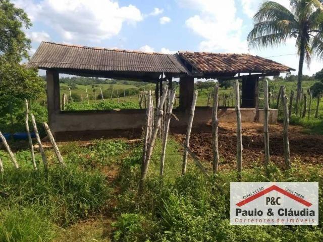 Ótima propriedade em Feira Nova, com 4 hectares - Foto 8