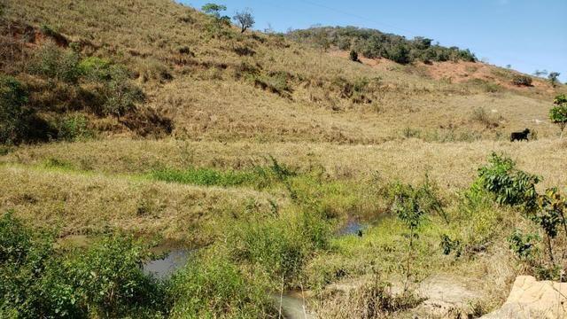 Fazenda 42 Alqueires em Campanário/MG, região de Governador Valadares/MG - Foto 7