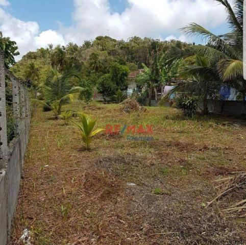 Terreno à venda, 800 m² por r$ 130.000 - olivença - ilhéus/ba - Foto 8