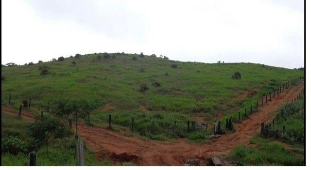 Vendo Excelente fazenda 95 hectares 36 Km de Porto Velho - Foto 20