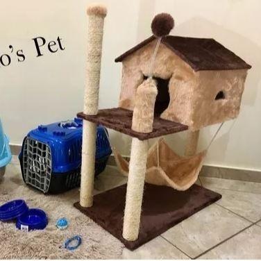 Aranhador de Gato + Caixa de transporte