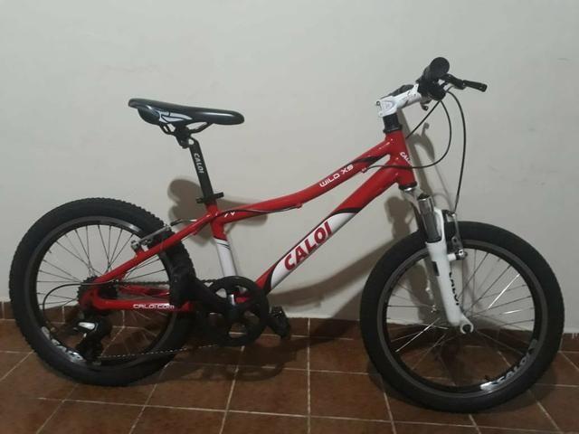 Bicicleta Caloi wild XS Aro 20 7 Marchas