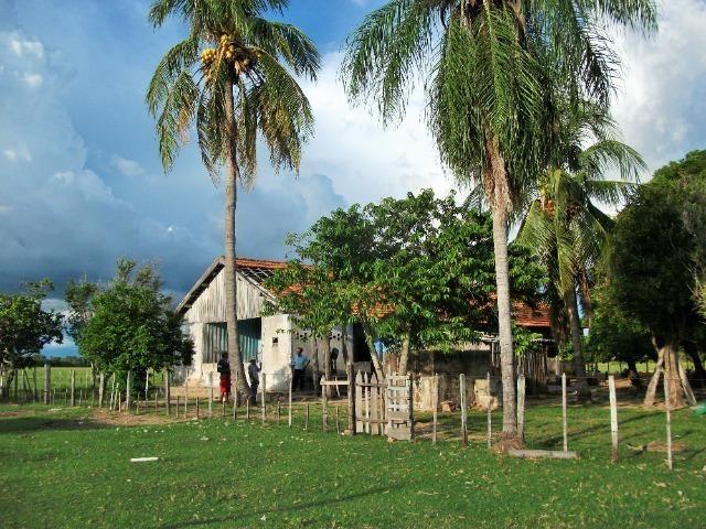Excelente Fazenda no Pantanal do Mato Grosso do Sul - Foto 11