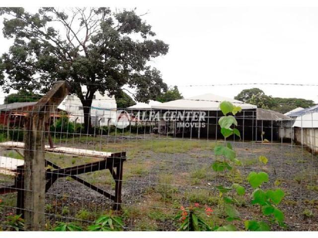 Área para alugar, 1000 m² por r$ 2.000/mês - setor castelo branco - goiânia/go - Foto 3