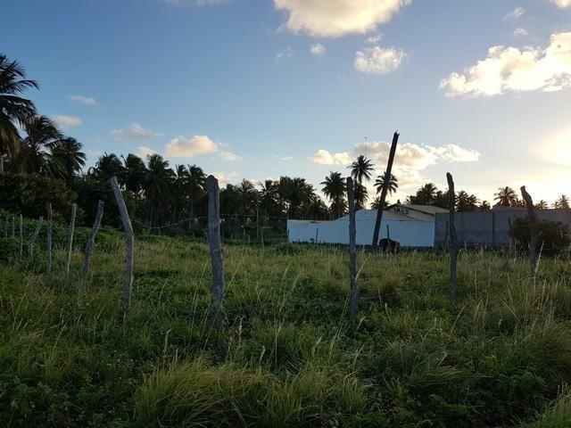 Vendo ótimo terreno escriturado,TEO041 - Foto 2