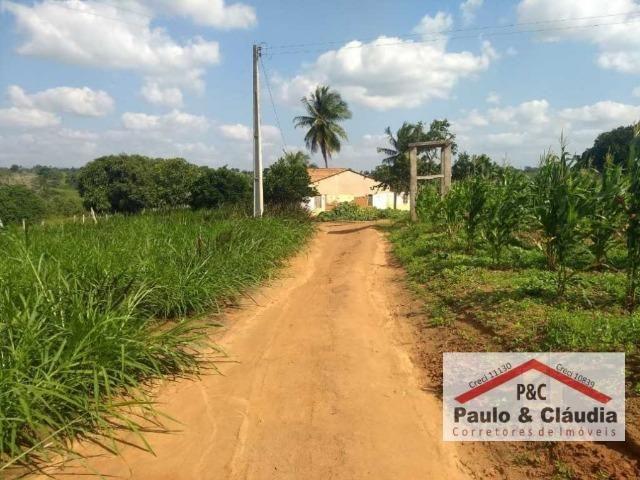 Ótima propriedade em Feira Nova, com 4 hectares - Foto 4