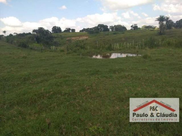 Ótima propriedade em Feira Nova, com 4 hectares