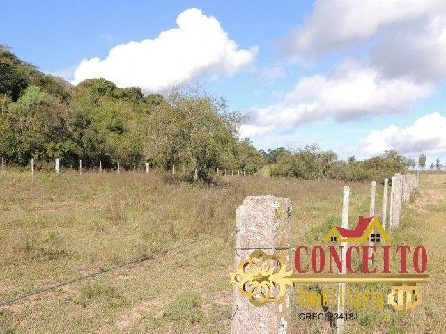 T.O.R.R.O 3,5 hectares no centro de Águas Claras por apenas R$ 300 mil - confira - Foto 4