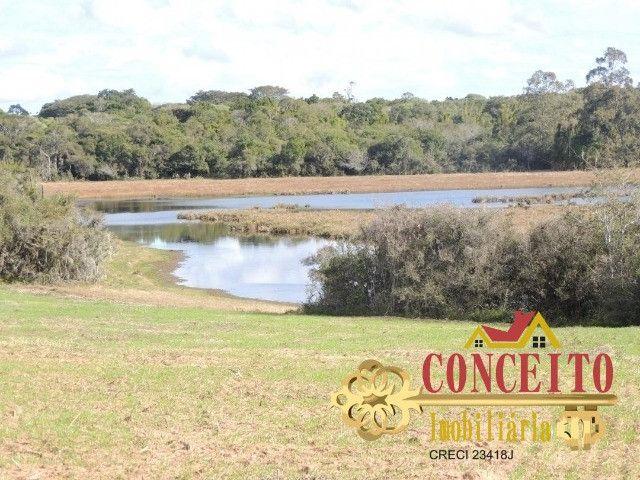 T.O.R.R.O 3,5 hectares no centro de Águas Claras por apenas R$ 300 mil - confira