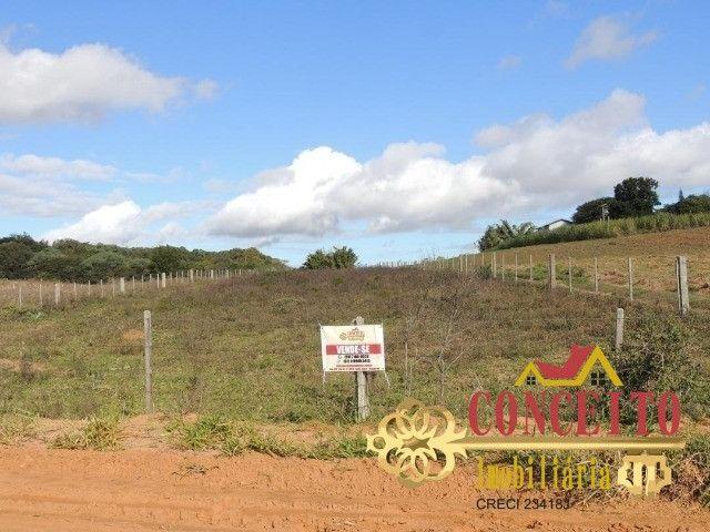 T.O.R.R.O 3,5 hectares no centro de Águas Claras por apenas R$ 300 mil - confira - Foto 2