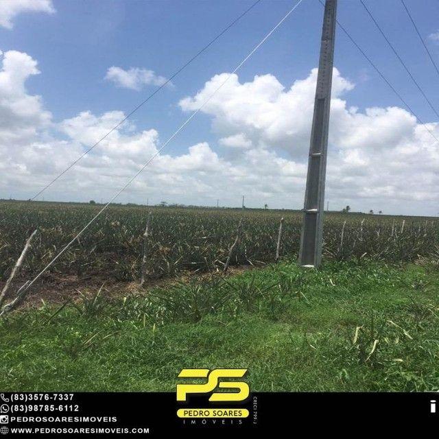 Terreno com plantação à venda, 200000 m² por R$ 1.000.000 - Santa Rita/PB - Foto 8