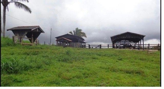 Vendo Excelente fazenda 95 hectares 36 Km de Porto Velho - Foto 6