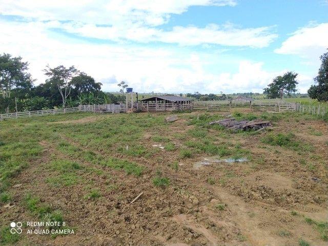 Fazenda 90 alqueires ref# 889 - Foto 8
