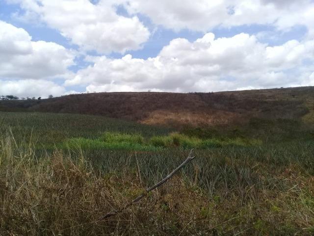 Pombos-Vend. 480 mil reais-Tem 120 Hect. Fazenda Completa,Água,Pastos, e mais - Foto 7
