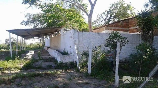 Chácara rural à venda. - Foto 2
