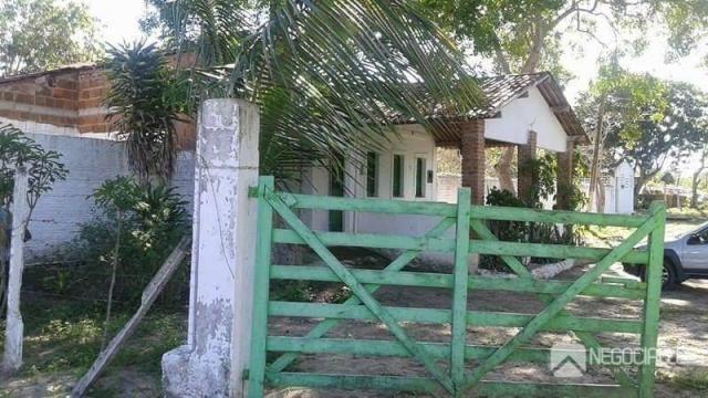 Chácara rural à venda. - Foto 3