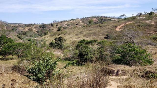 Fazenda 42 Alqueires em Campanário/MG, região de Governador Valadares/MG - Foto 2
