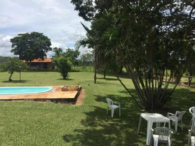 Fazenda 86 hec de área com ótima topografia, piscina em Inimutaba/MG - Foto 8