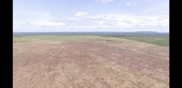Fazenda com 2037 h na região de Balsas MA