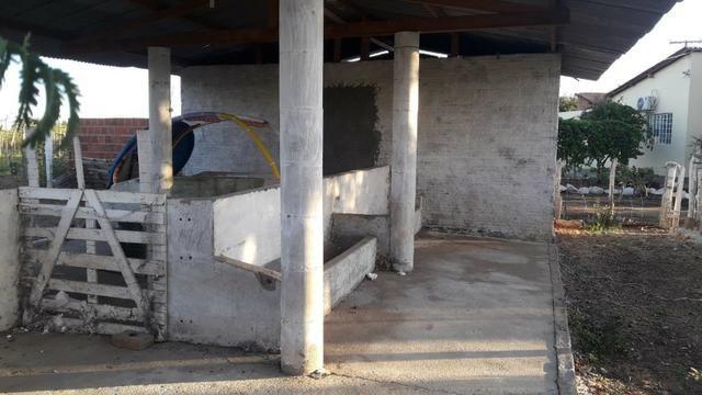 Chácara pronta p moradia , apenas 9 km Jua Shopping e 13 km centro - Juazeiro -BA - Foto 5