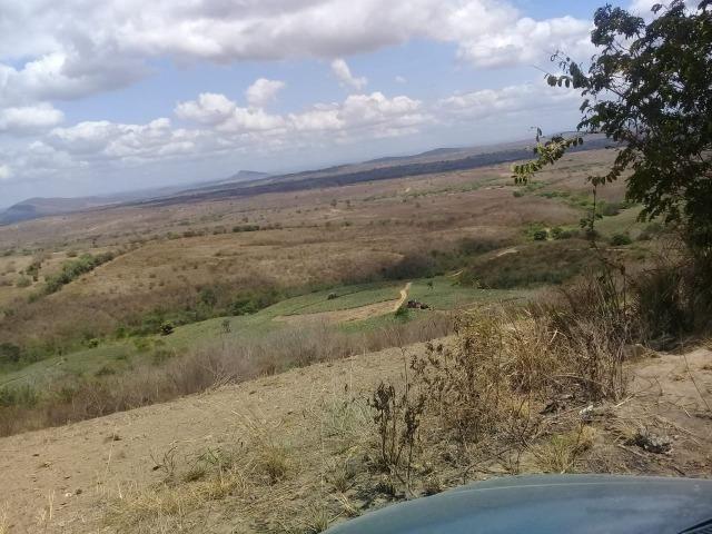 Pombos-Vend. 480 mil reais-Tem 120 Hect. Fazenda Completa,Água,Pastos, e mais - Foto 20
