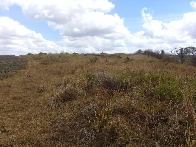 Pombos-Vend. 480 mil reais-Tem 120 Hect. Fazenda Completa,Água,Pastos, e mais - Foto 5