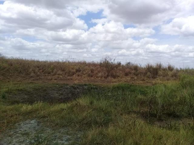 Pombos-Vend. 480 mil reais-Tem 120 Hect. Fazenda Completa,Água,Pastos, e mais - Foto 13