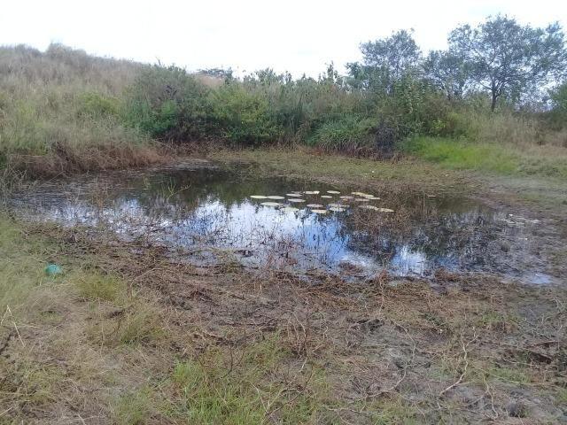 Pombos-Vend. 480 mil reais-Tem 120 Hect. Fazenda Completa,Água,Pastos, e mais