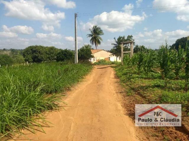 Ótima propriedade em Feira Nova, com 4 hectares - Foto 3
