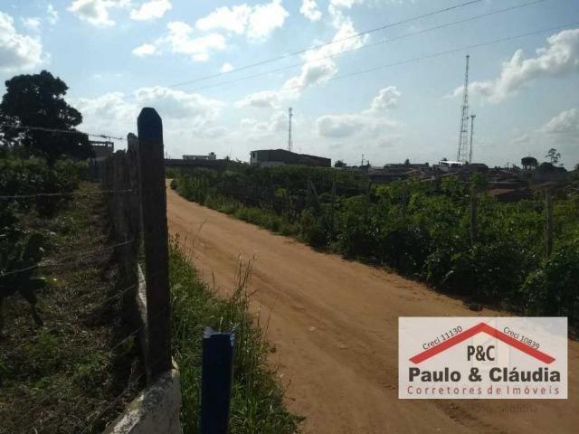 Ótima propriedade em Feira Nova, com 4 hectares - Foto 2