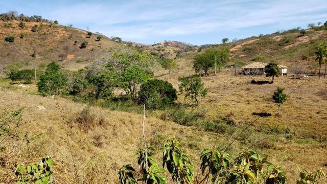 Fazenda 42 Alqueires em Campanário/MG, região de Governador Valadares/MG