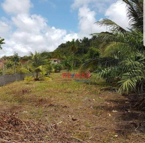 Terreno à venda, 800 m² por r$ 130.000 - olivença - ilhéus/ba - Foto 3