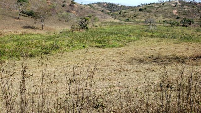 Fazenda 42 Alqueires em Campanário/MG, região de Governador Valadares/MG - Foto 13