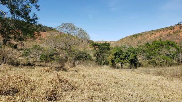 Fazenda 42 Alqueires em Campanário/MG, região de Governador Valadares/MG - Foto 15