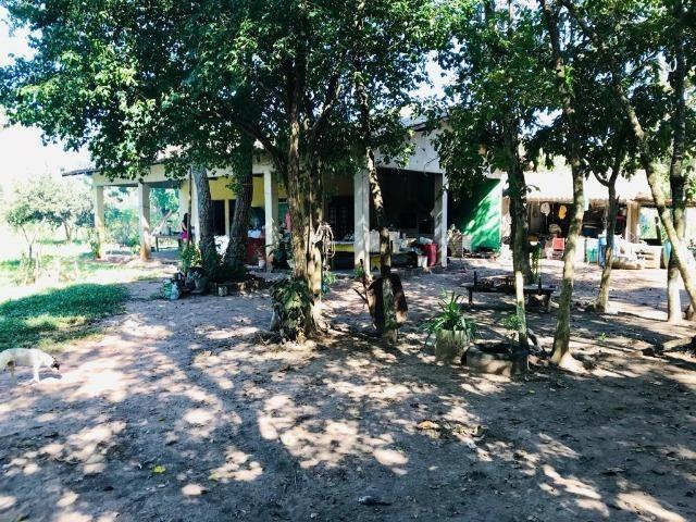 Vendo Chácara no Distrito de Santa Antonio (agende sua visita) Aceito Troca em imovel - Foto 13