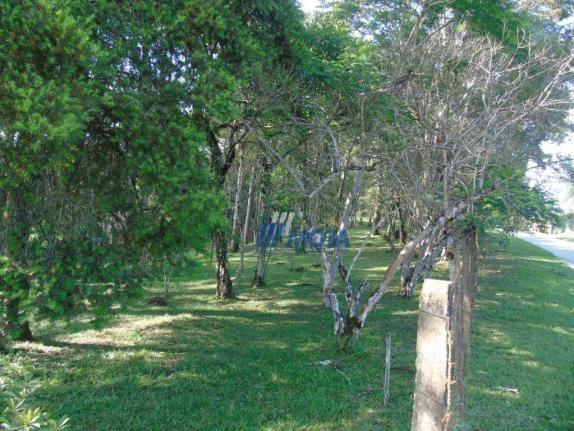 Chácara urbana campina grande do sul - Foto 17