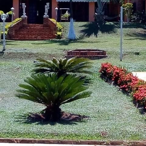 Casa Sitio Rancho Guape Capitolio - Foto 13
