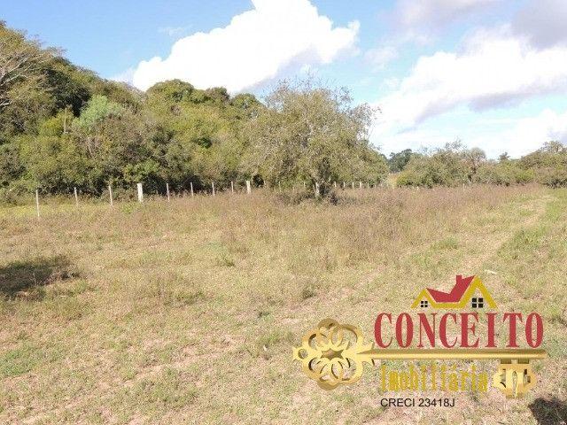 T.O.R.R.O 3,5 hectares no centro de Águas Claras por apenas R$ 300 mil - confira - Foto 7