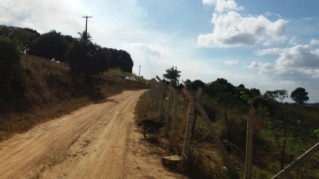 Propriedade de 5 hectares, escriturada, entre Escada e Vitória de Santo Antão-PE - Foto 8