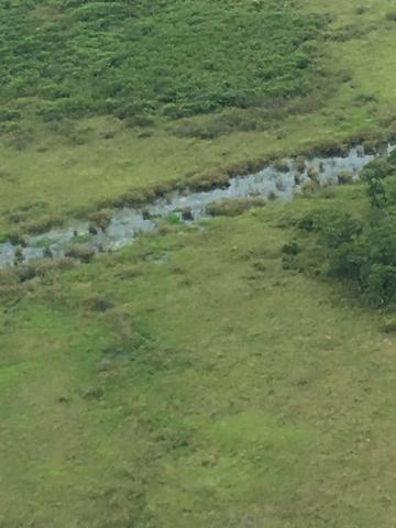 Excelente Fazenda no Pantanal do Mato Grosso do Sul - Foto 16