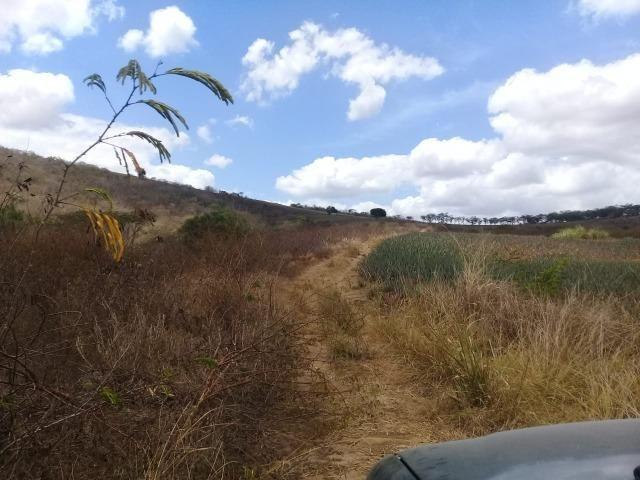 Pombos-Vend. 480 mil reais-Tem 120 Hect. Fazenda Completa,Água,Pastos, e mais - Foto 9