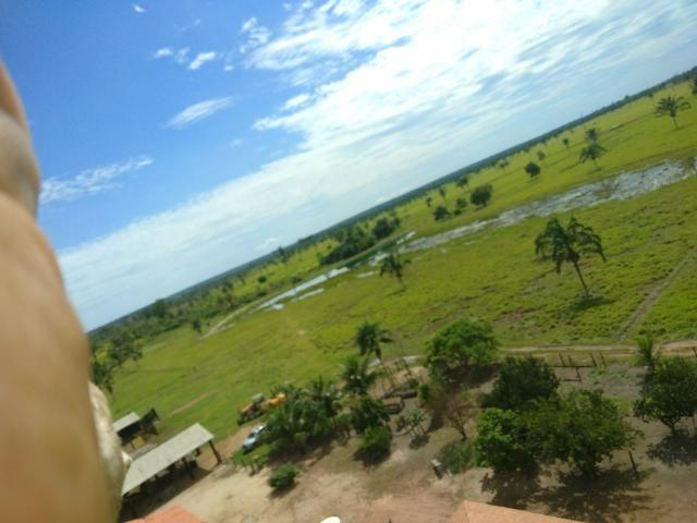Fazenda no Pará - Foto 16