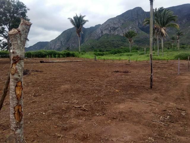 Terreno em itaitu/jacobina-OPORTUNIDADE! - Foto 5