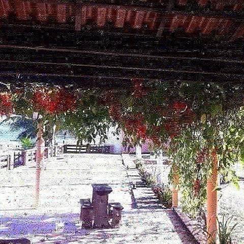 Casa Sitio Rancho Guape Capitolio - Foto 6