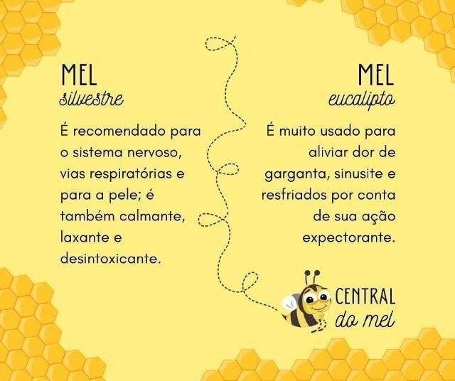 Mel Puro - Foto 5